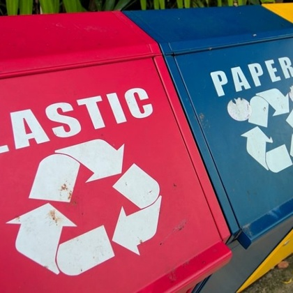 PAPER V PLASTIC. WHICH IS BETTER?